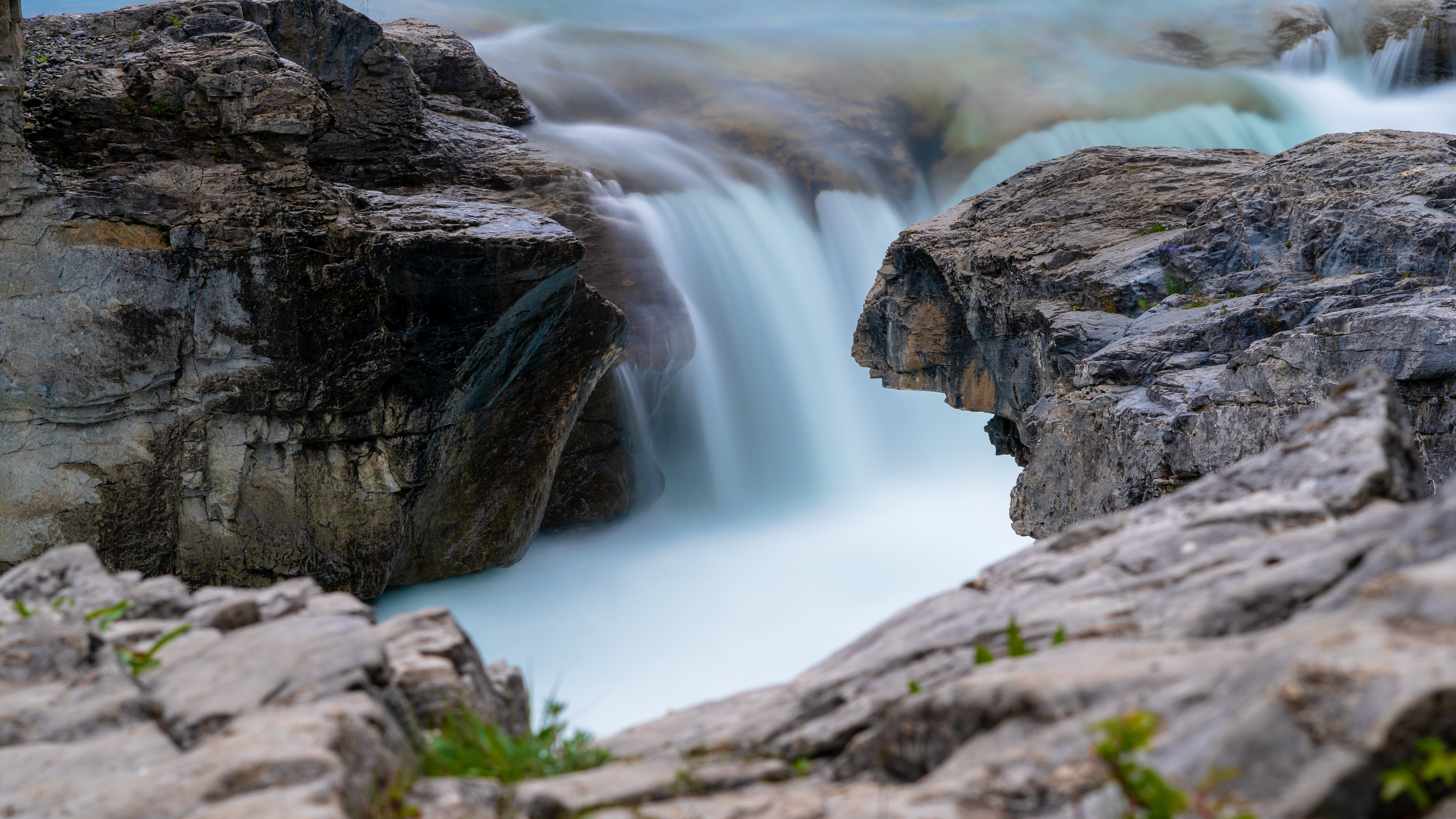 elbow falls crop